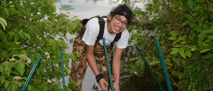 Swapna Subramanian sets up an experiment at Pymatuning Labratory of Ecology.